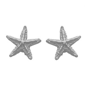 Σκουλαρίκια Ασημένια Αστερίες